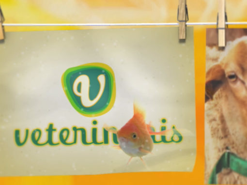 """Presentación de programa """"Veterinaris"""" TV3 de Catalunya"""