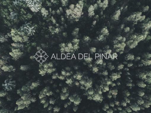 ALDEA DEL PINAR